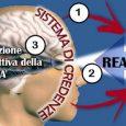 """Alla disposizione biologica delle relazioni interpersonali si aggiunge la cognizione attraverso l'operare dei cosiddetti schemi relazionali. Gli schemi relazionali si riferiscono a rappresentazioni """"generalizzate"""" e gerarchicamente organizzate circa se stessi […]"""